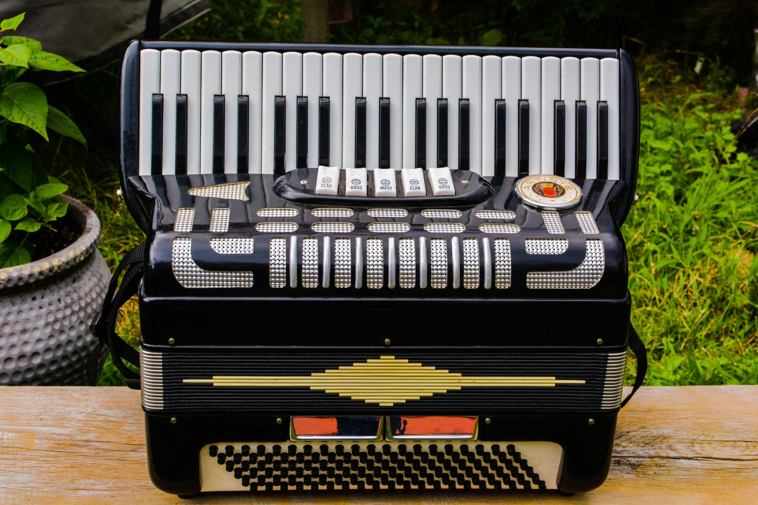 Easiest Instrument To Learn Accordion