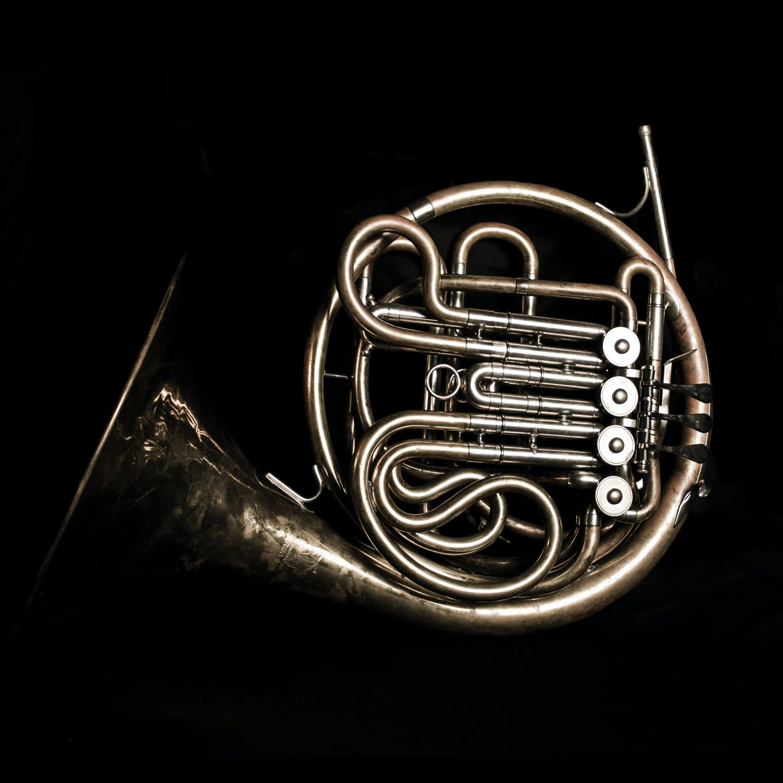 Easiest Instrument To Learn French Horn