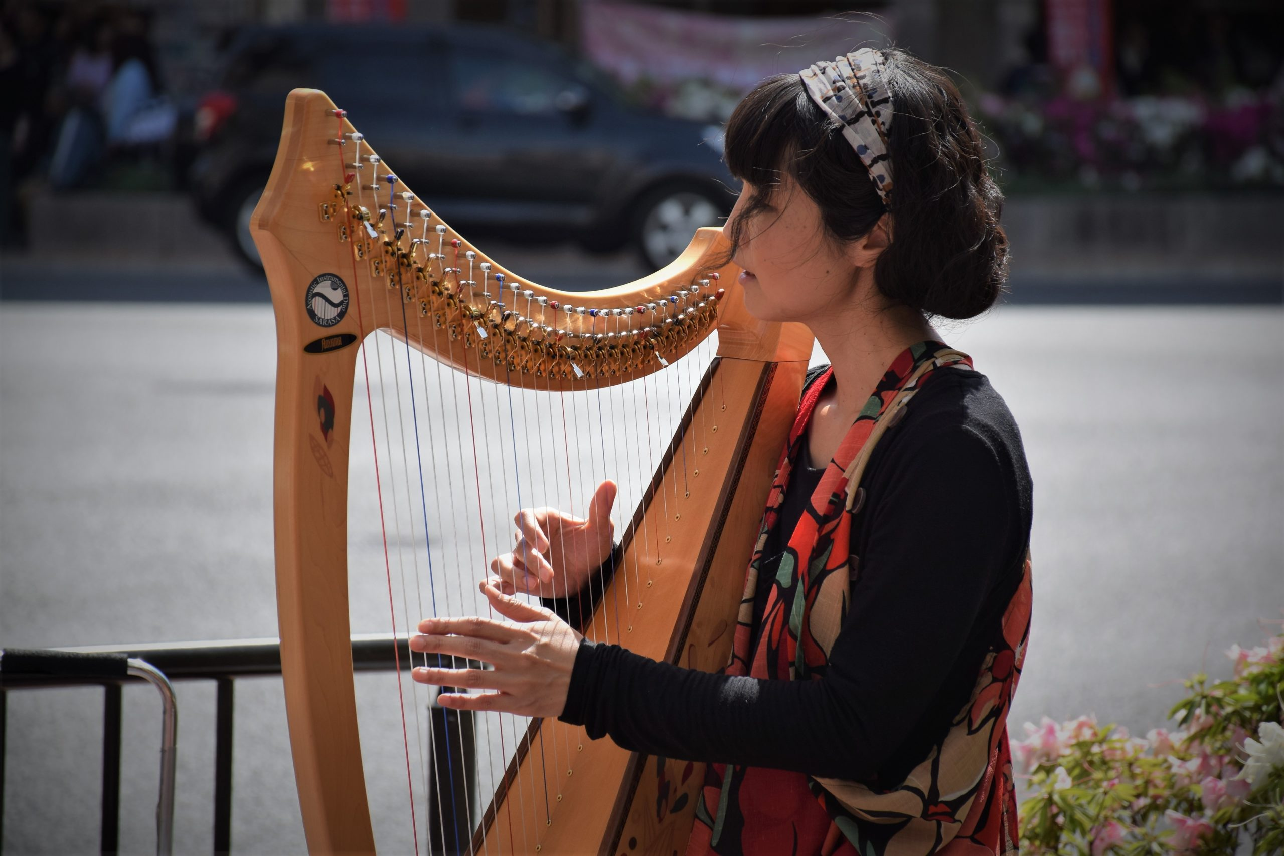 Easiest Instrument To Learn Harp