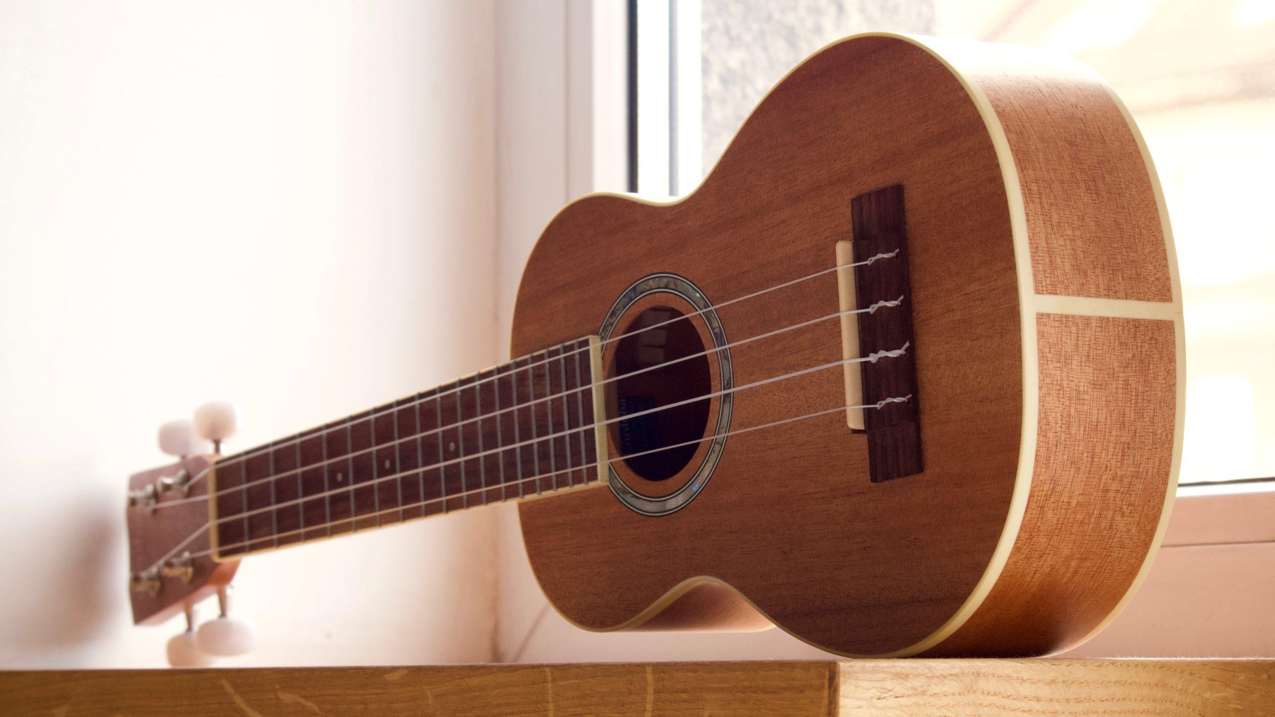 Easiest Instrument To Learn Ukulele